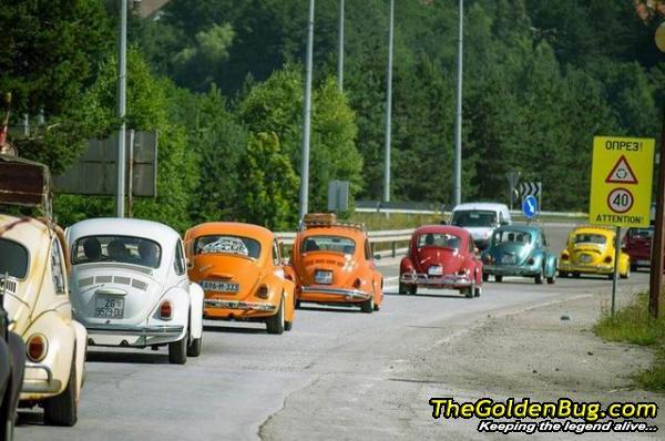 Skup VW buba u koloni na planini Zlatibor